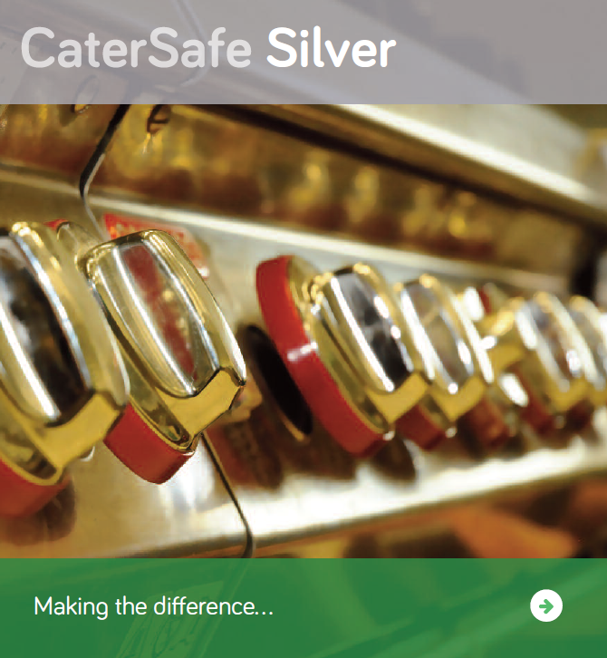 CaterSafe Silver